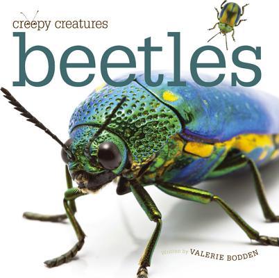 Beetles By Bodden, Valerie